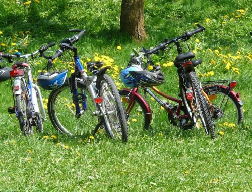 Top 5 ponadczasowych rowerów dla każdego