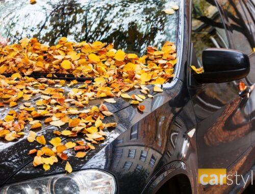 Jak radzić sobie z trudnymi zabrudzeniami jesienią i zimą